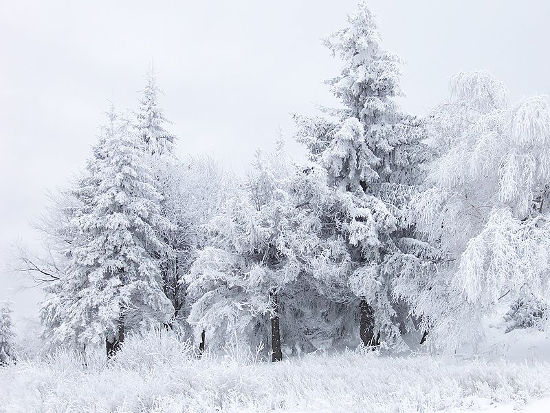 800px-Snow_Scene_at_Shipka_Pass_1
