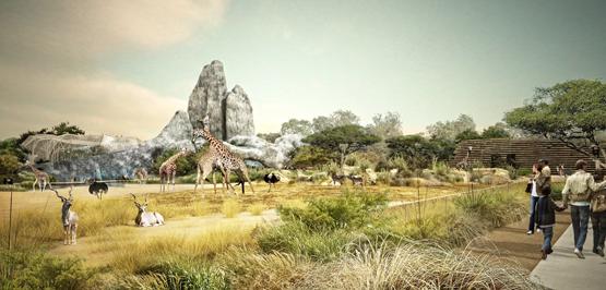 zoo-de-Vincennes-sahel