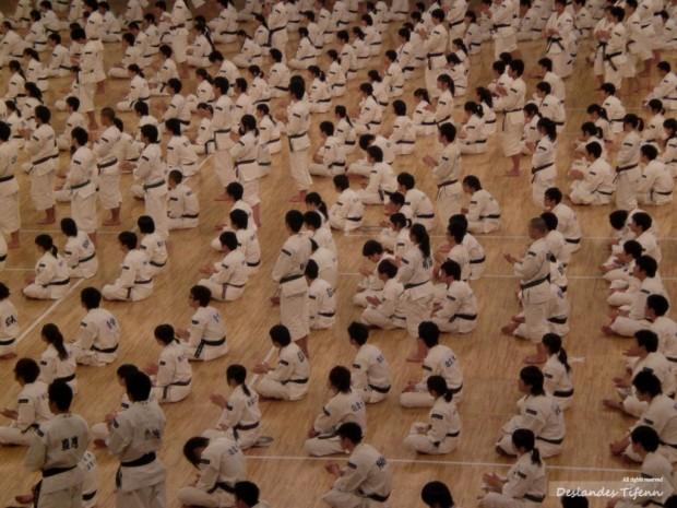 Impressions Européennes sur la Ville Japonaise – Pensées sur le dépaysement