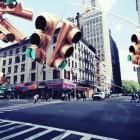 New York Biotopes