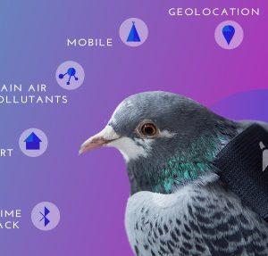 Plume App - Plume Labs