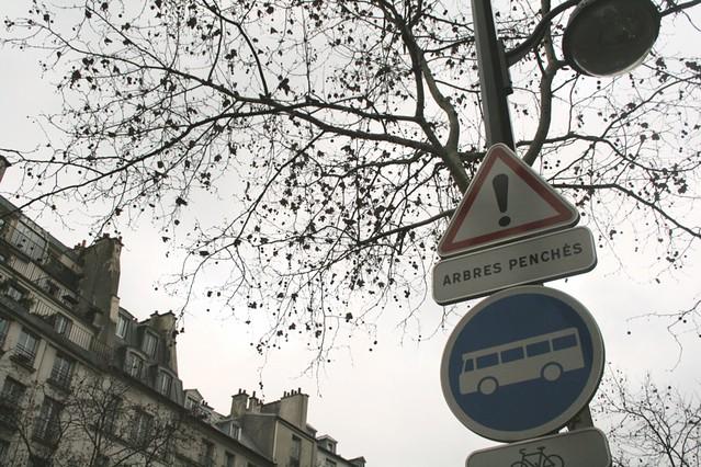 Attention, les arbres penchent - Flickr - @orangemania