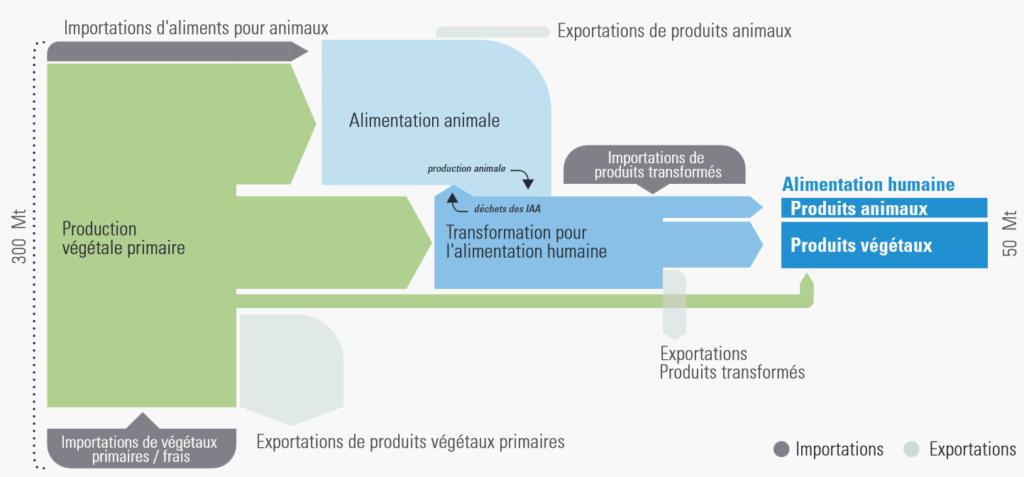 Importance des flux matières depuis la production végétale jusqu'à l'assiette